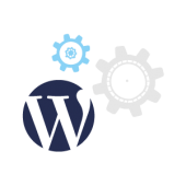 sweetmag-wordpress-service-icon-support